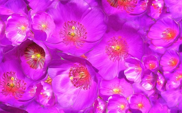 Artistic Painting Flower Purple Anemone HD Wallpaper   Background Image
