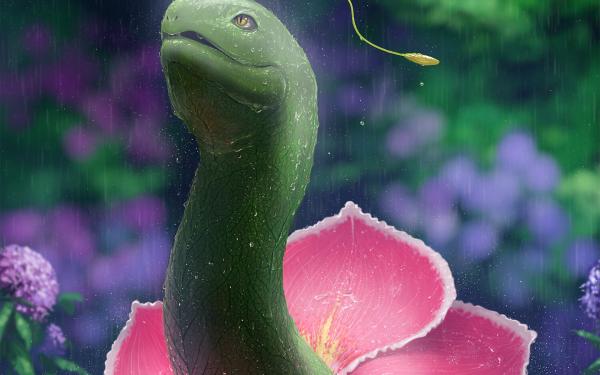 Anime Pokémon Meganium HD Wallpaper | Background Image