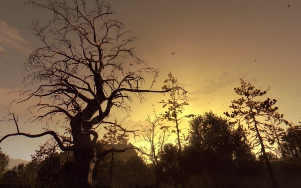 Video Game Dying Light Tree HD Wallpaper | Background Image