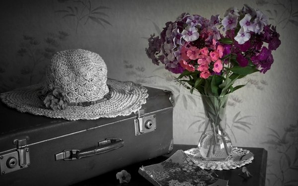 Photography Still Life Flower Black & White Suitcase Hat Book HD Wallpaper | Background Image