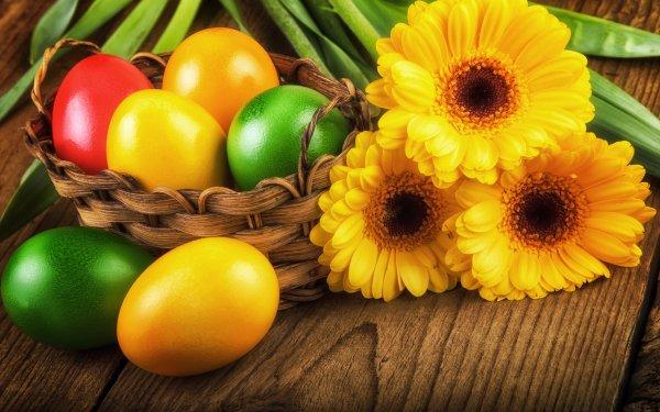 Vacances Pâques Basket Easter Egg Oeuf Gerbera Fleur Yellow Flower Fond d'écran HD | Image