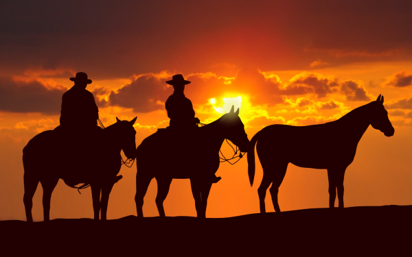 Photography Cowboy Silhouette Horse Sunset HD Wallpaper | Background Image