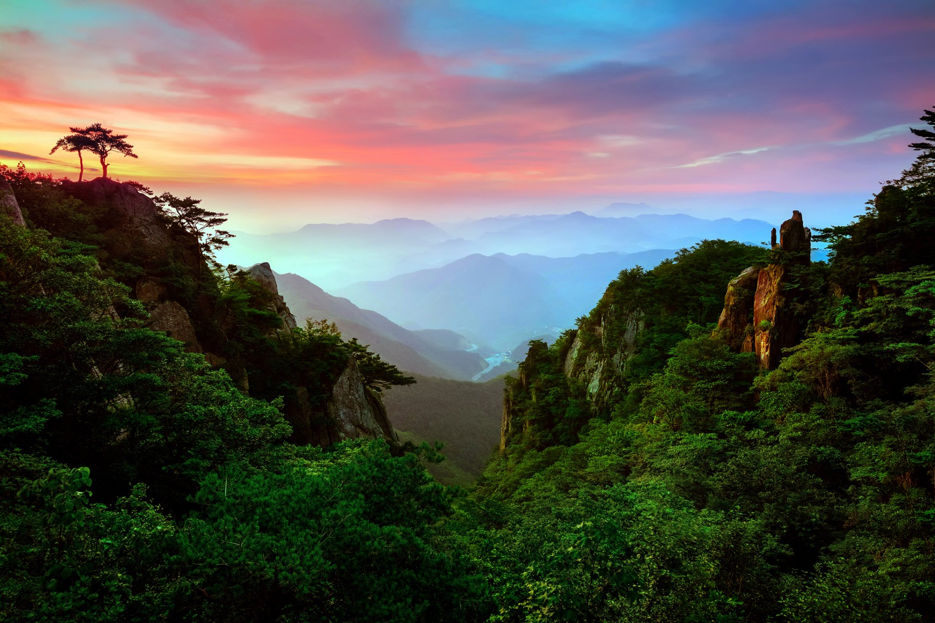 Green Forest In The Mountains HD Wallpaper