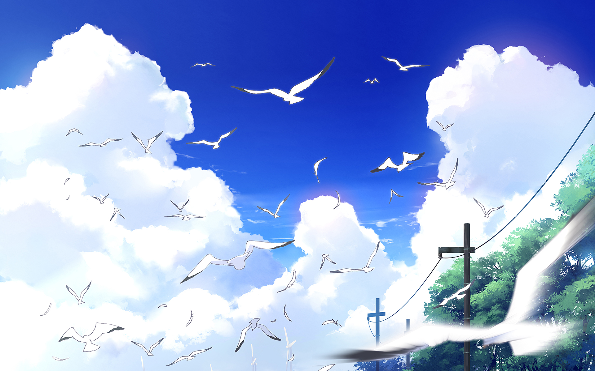 Wallpapers ID:852090