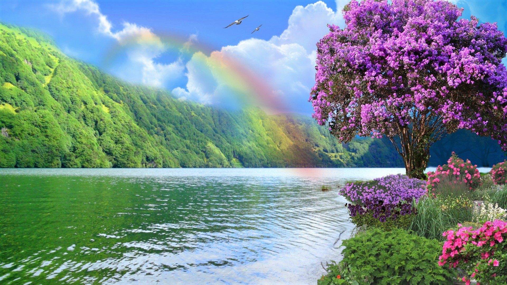 Rainbow over Spring Lake HD Wallpaper | Background Image ...