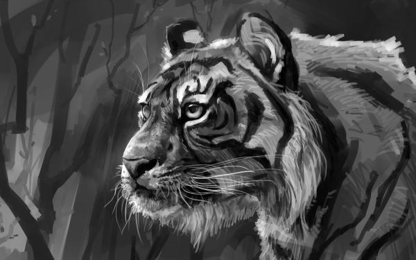 Animal Tiger Cats Artwork HD Wallpaper | Background Image