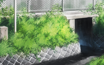 HD Wallpaper | Background ID:874105