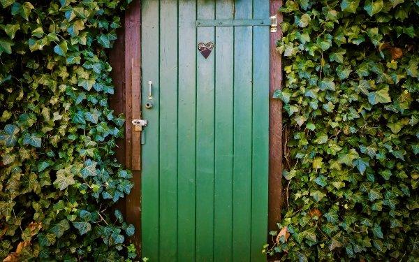 Man Made Door Heart Ivy Green HD Wallpaper | Background Image