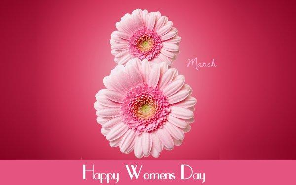 Vacances Journée internationale de la Femme Pink Flower Happy Women's Day Déclaration Gerbera Fond d'écran HD | Image