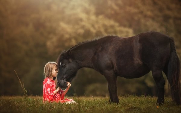 Photography Child Horse Little Girl Blonde Depth Of Field Friend HD Wallpaper | Background Image