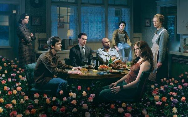 TV Show Six Feet Under HD Wallpaper | Background Image
