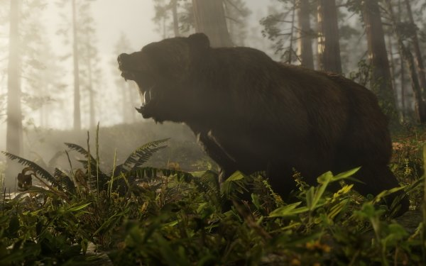 Video Game Red Dead Redemption 2 Red Dead Bear Red Dead Redemption HD Wallpaper | Background Image