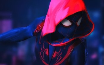 279 Spider Man Into The Spider Verse Hd Wallpapers