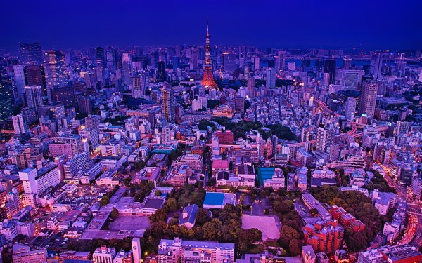 Man Made Tokyo Cities Japan City Cityscape Building Skyscraper Night Tokyo Tower HD Wallpaper | Background Image
