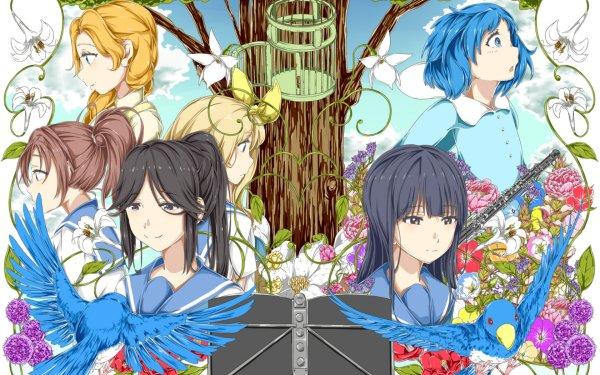 Anime Sound! Euphonium Nozomi Kasaki Kurumi Kitamura Natsuki Nakagawa Mizore Yoroizuka HD Wallpaper   Background Image