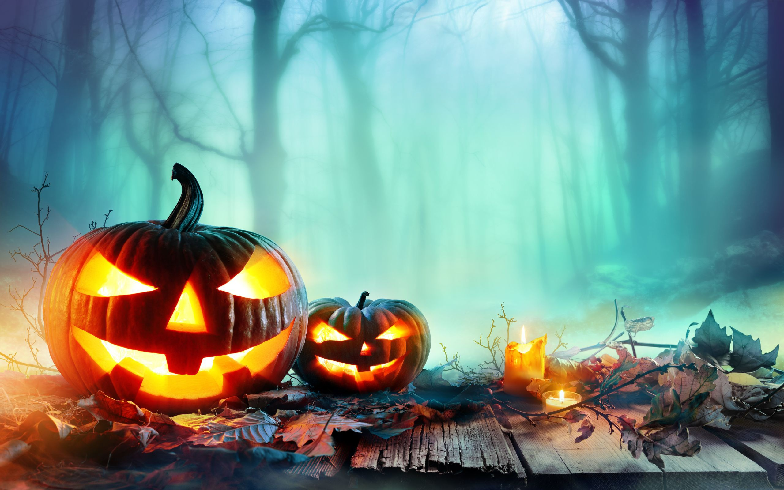 Halloween Hd Wallpaper Background Image 2560x1600 Id 959830