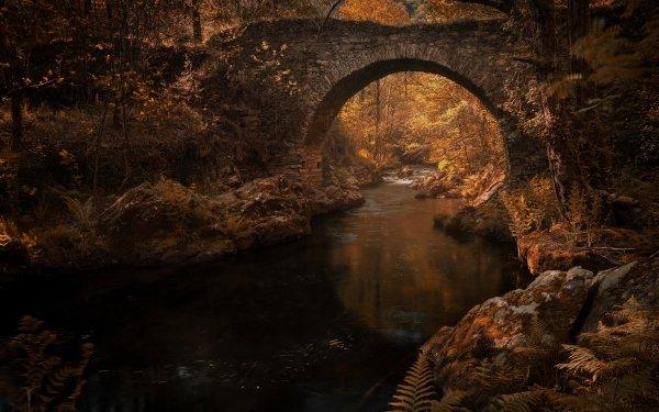 Man Made Bridge Bridges River Nature HD Wallpaper   Background Image