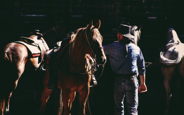 Photography Cowboy Horse Jeans Hat HD Wallpaper | Background Image