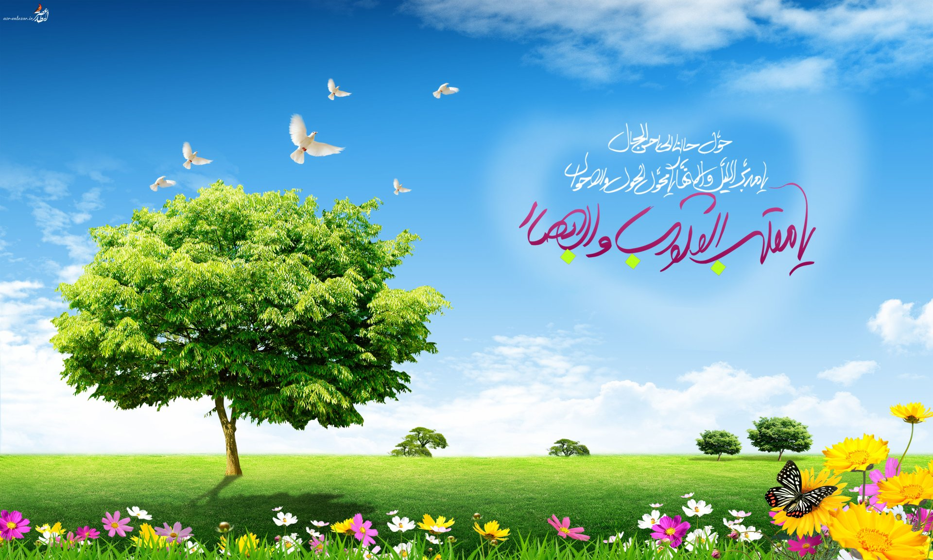 Wallpapers ID:994909